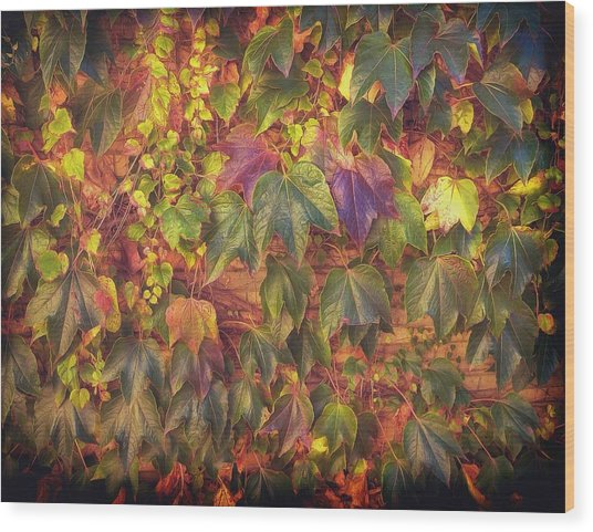 Autumnal Leaves Wood Print