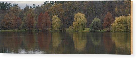 Autumnal Wood Print by Mihail Antonio Andrei