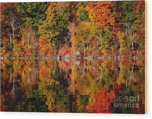 Autumnal Reflections Wood Print by Andrea Simon