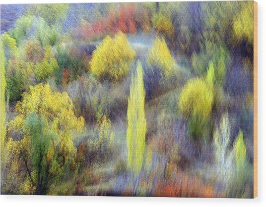 Autumnal Wood Print by Robert Shahbazi