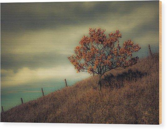 Autumns End Wood Print