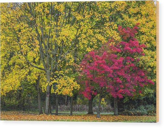 Autumn's Peak Wood Print