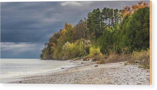 Autumn's Shoreline Wood Print
