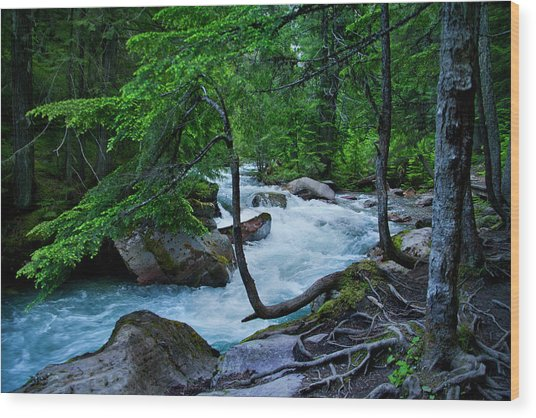 Avalanche Creek Wood Print