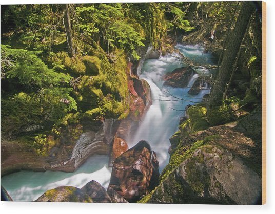 Avalanche Gorge Wood Print