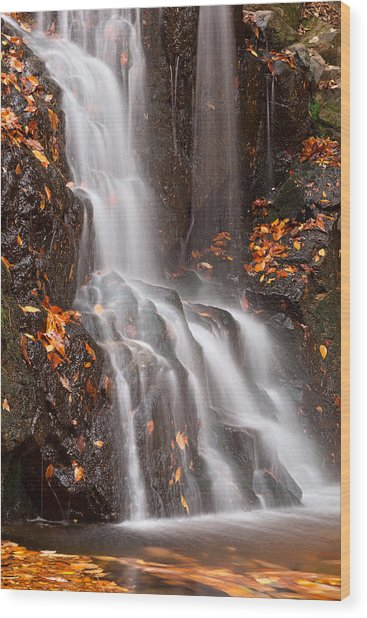 Avalon Falls Wood Print