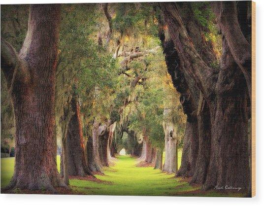 Avenue Of Oaks Sea Island Golf Club St Simons Island Georgia Art Wood Print