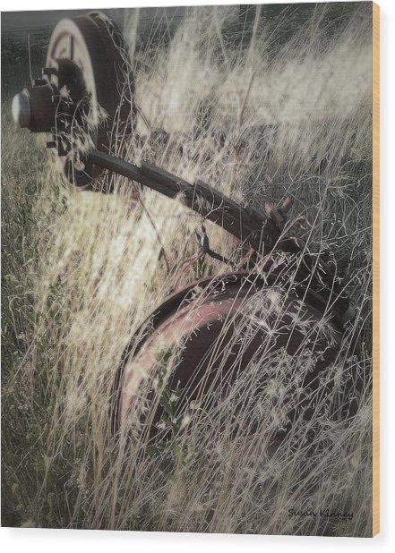 Axel Wood Print