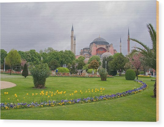 Ayia Sophia Ayia And Gardens In Istanbul Wood Print