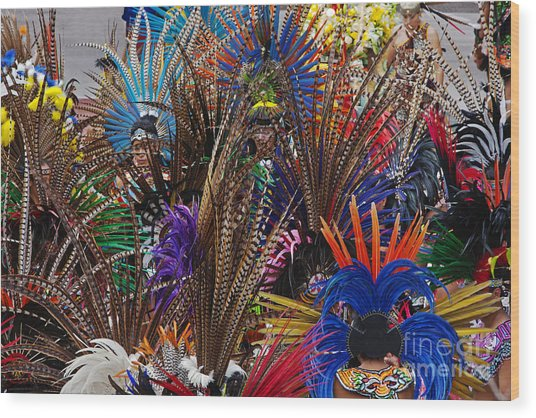 Aztec Feather Dancers - Mexico Wood Print