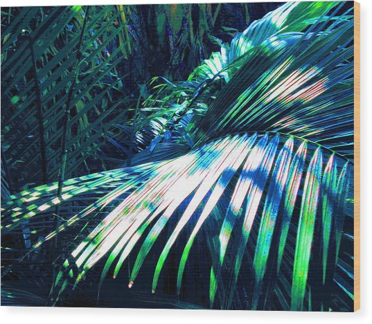 Azul Shimmer Wood Print by Scott K Wimer