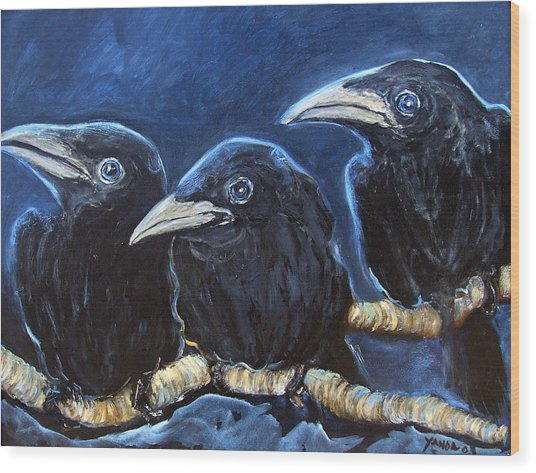 Baby Crows Wood Print