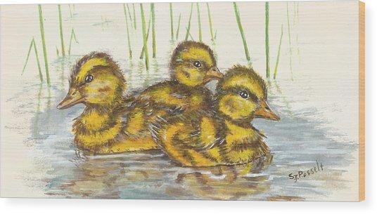 Baby Ducks For Ma Wood Print