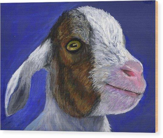 Baby Goat Wood Print by Angela Finney