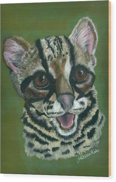 Baby Ocelot Wood Print by Jessica Kale