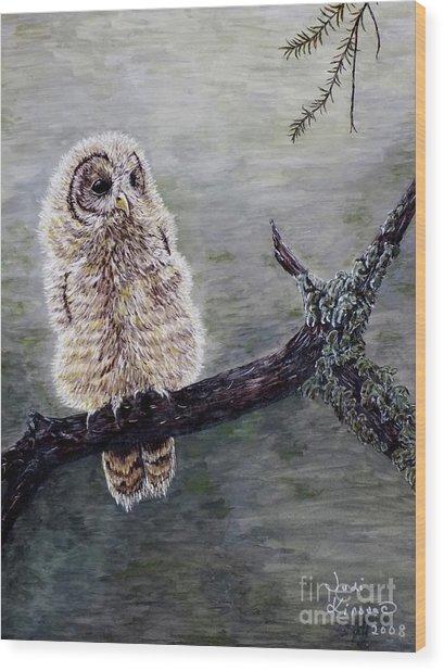 Baby Owl Wood Print