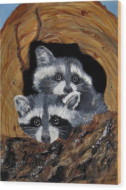 Baby Raccoons Wood Print by Dia Spriggs