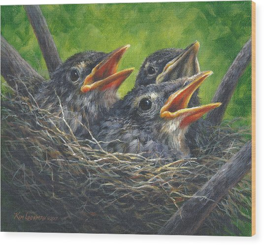 Baby Robins Wood Print