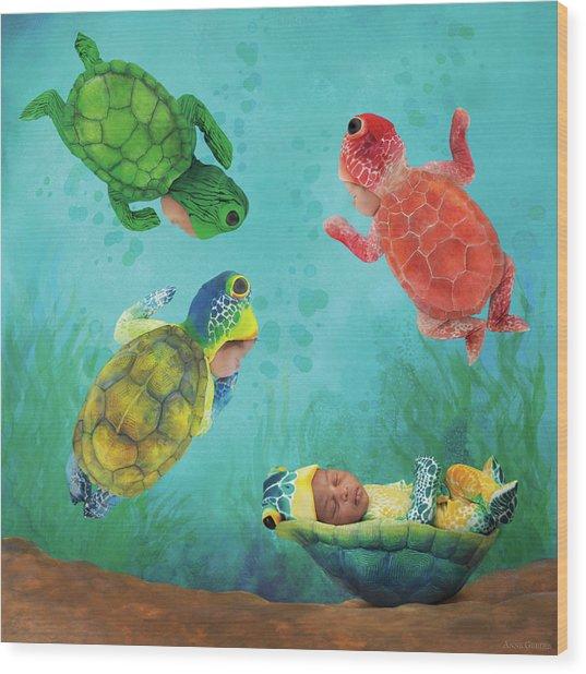 Baby Turtles Wood Print by Anne Geddes