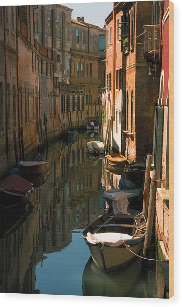 Back Canal In Venice Wood Print by Michael Henderson