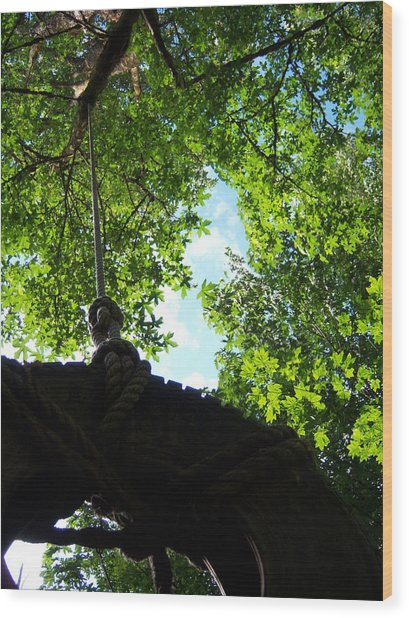 Back Under The Tire Swing Wood Print by Ken Day
