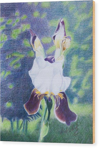 Back Yard Iris Wood Print