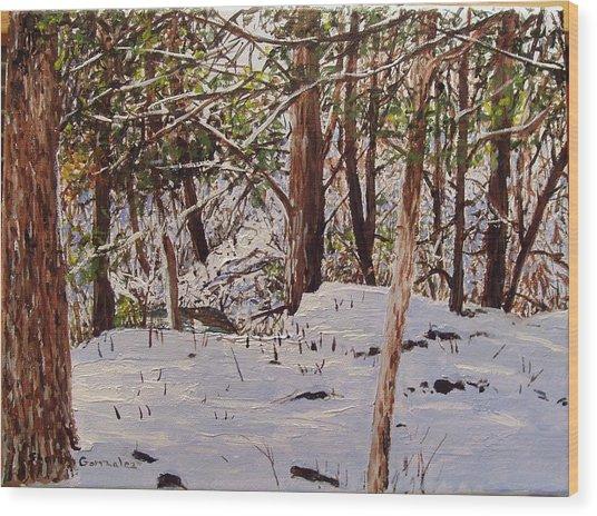 Back Yard Snow Wood Print by Sharon  De Vore