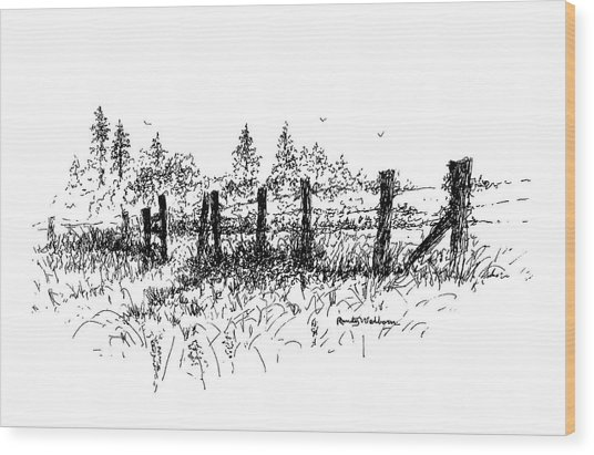 Backlit Fence Wood Print
