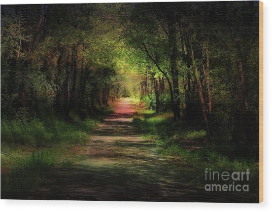 Backroad Goodbye Wood Print