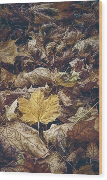Backyard Leaves Wood Print