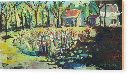 Backyard Poppies Wood Print