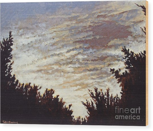 Backyard Sunset Wood Print