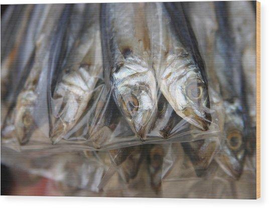 Bag O' Fish 2 Wood Print by Jez C Self