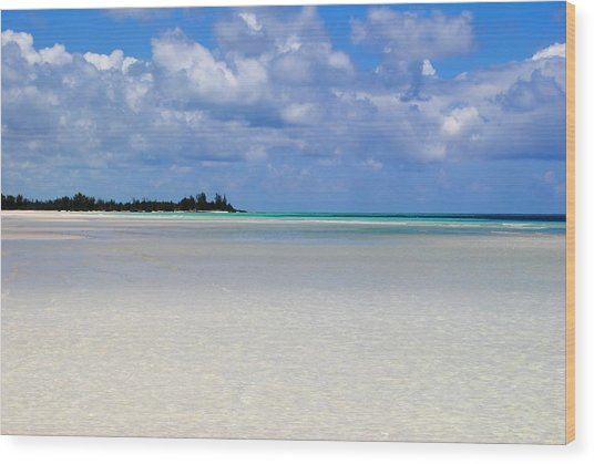 Bahamas Wood Print by Karla Kernz