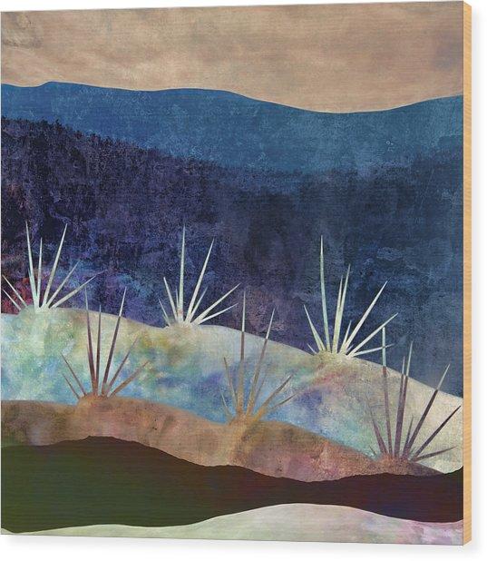 Baja Landscape Number 2 Wood Print