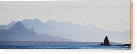 Baja Point Blue Wood Print
