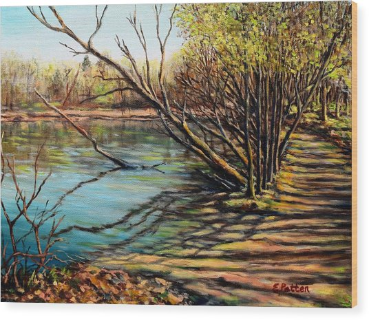 Bakers Pond Ipswich Ma Wood Print