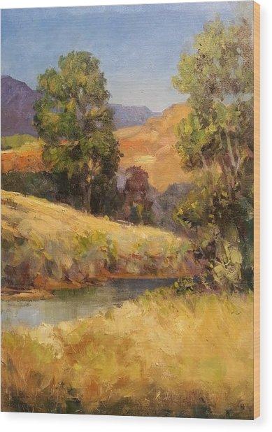 Bakesfield Creek Afternoon Wood Print