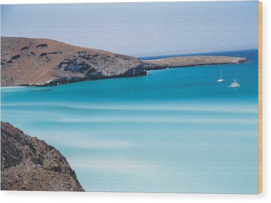 Balandra Bay Wood Print by Kathy Schumann