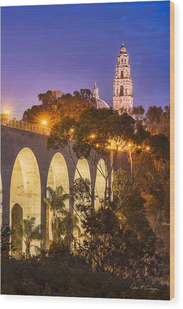 Balboa Bridge Wood Print