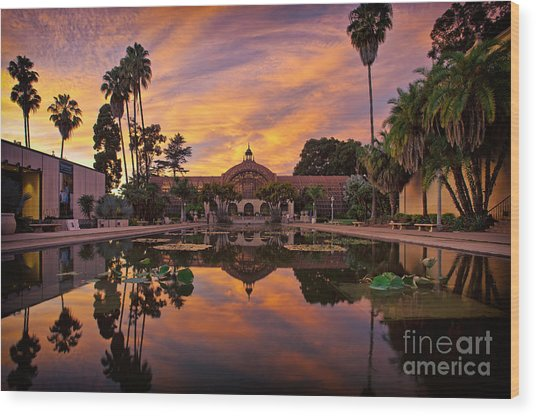 Balboa Park Botanical Building Sunset Wood Print