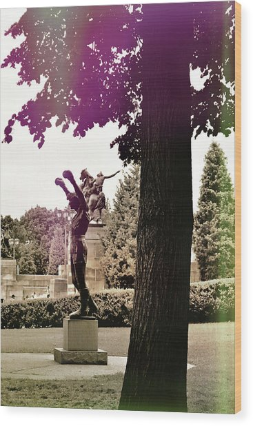 Rocky Balboas Moment Wood Print by JAMART Photography