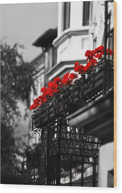 Balcony Roses Wood Print