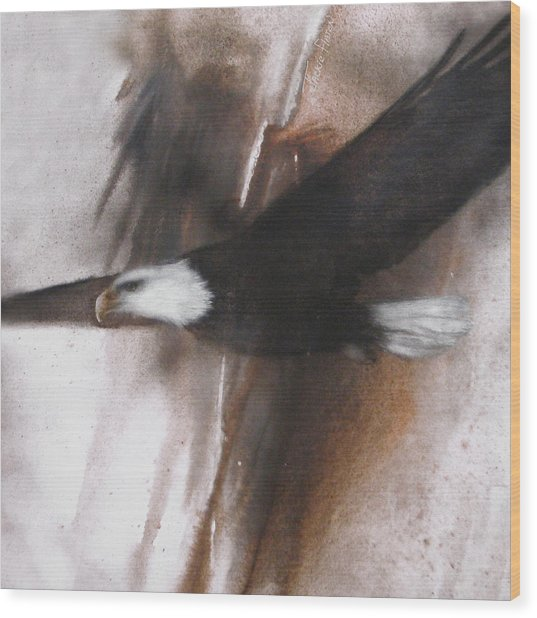 Bald Eagle Flight Wood Print