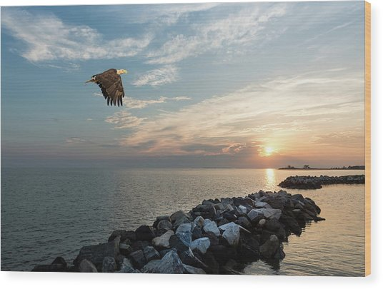 Bald Eagle Flying Over A Jetty At Sunset Wood Print