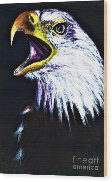 Bald Eagle - Francis -audubon Wood Print