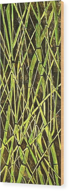 Bambo Garden Wood Print