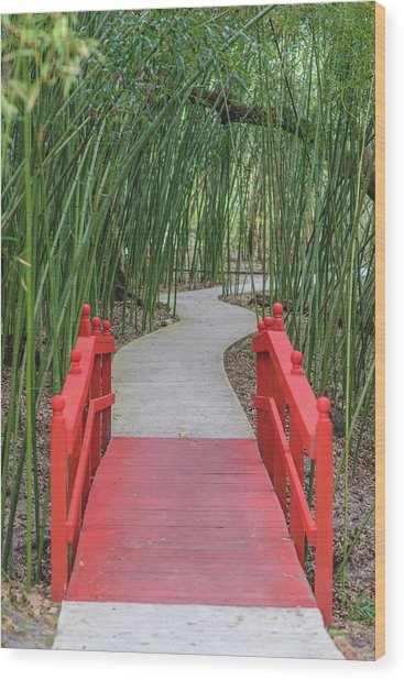 Wood Print featuring the photograph Bamboo Path Through A Red Bridge by Raphael Lopez