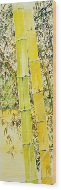 Bamboo Wood Print by Rainer Jacob