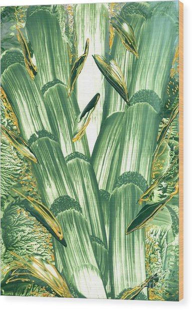 Bamboo Treasure Wood Print by Heather Hennick